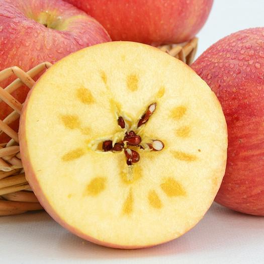 新疆阿克苏冰糖心红富士苹果 加力果红旗坡农场老树榨汁脆甜苹果