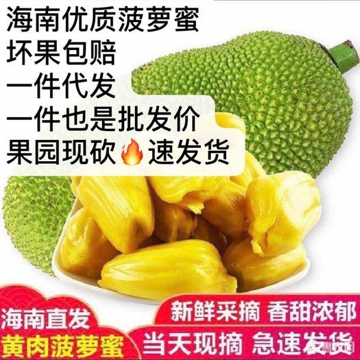 红肉菠萝蜜 果坏包赔果实饱满15-37斤之间、