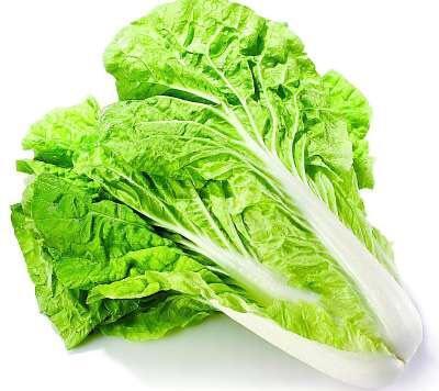 湖南长沙黄牙白白菜 1斤以下 净菜