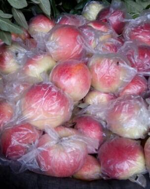 这是一张关于美八苹果 75 - 80mm 片红 膜袋的产品图片