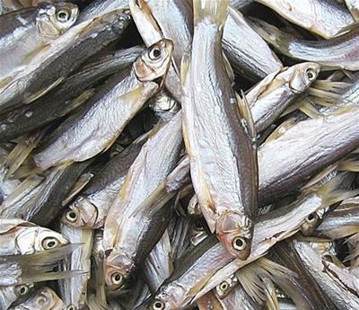 湖北咸宁咸鱼 24个月以上