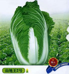 重庆巫溪县山地王2号 3~6斤