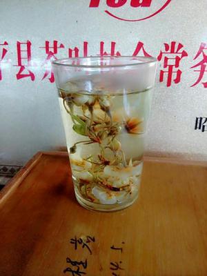 广西贺州保健茶 罐装