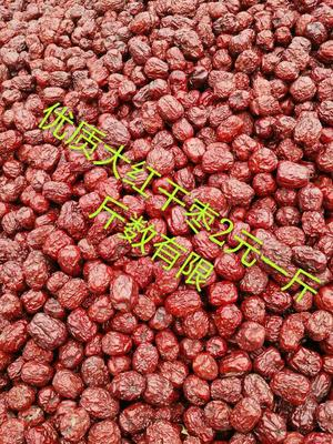 河南郑州干果蜜饯 大红枣