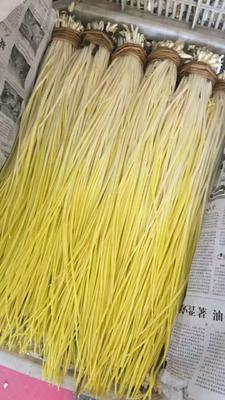 河北唐山蒜黄 50 - 60cm 以当天价格为主