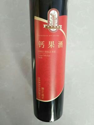 陕西西安果酒 10-15度 3-5年