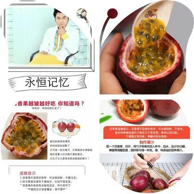 福建漳州紫红色百香果 80 - 90克