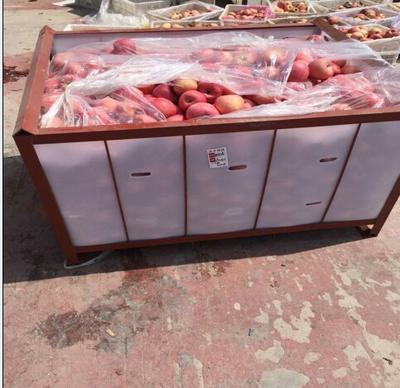 这是一张关于红富士苹果 80mm以上 条红 纸袋的产品图片