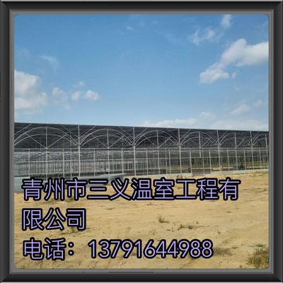 山东潍坊文洛式温室大棚