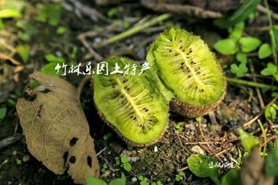 河北省唐山市古冶区菊锦大白菜 1~2斤 净菜