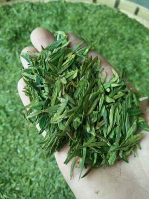 贵州六盘水贵州绿茶 礼盒装