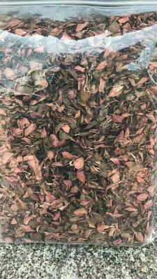 这是一张关于金线莲茶 散装,的产品图片