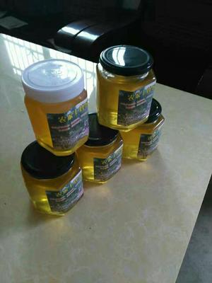 湖南郴州土蜂蜜 塑料瓶装 1年 95%以上
