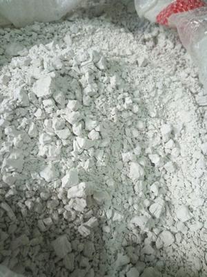 安徽阜阳红薯地瓜粉