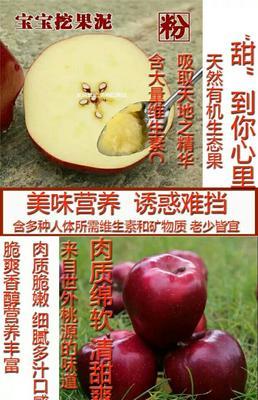 这是一张关于花牛苹果 75mm以上 纸袋 片红的产品图片