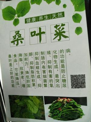 广东佛山速冻蔬果