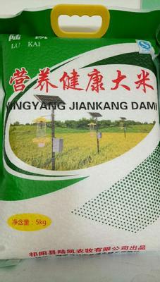 湖南永州大米 一等品 绿色食品 中稻