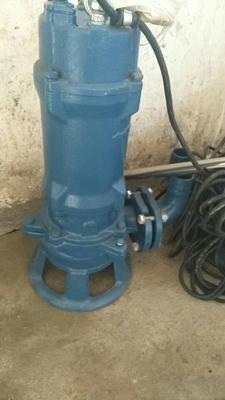 湖北荆州其它农机 污水切割水泵