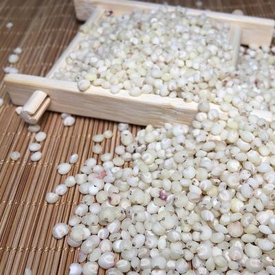 内蒙古赤峰高粱米 2等品 霉变 ≤1%