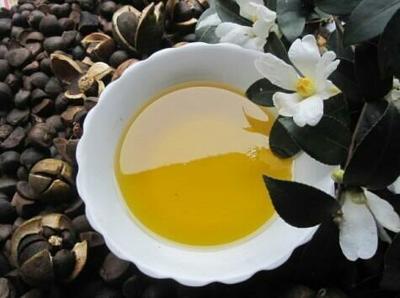 广西桂林野生山茶油 山茶油 野生山茶籽油批发零售