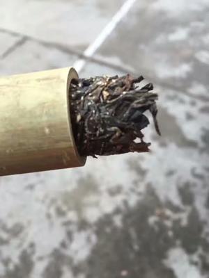 云南保山竹筒酒 罐装 熟茶 傣家竹筒茶