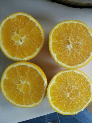 这是一张关于赣南脐橙 70 - 80mm 4-8两的产品图片