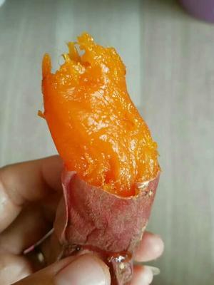 河南新乡烟薯25 黄皮 3两以上