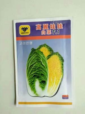 河南省郑州市惠济区娃娃菜种子
