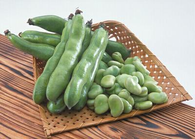 贵州毕节新鲜蚕豆