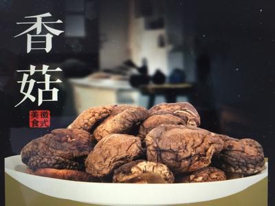 安徽黄山原木干香菇 袋装 1年以上