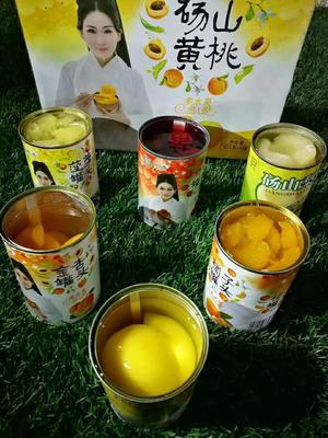 黑龙江哈尔滨杂果罐头 6-12个月 桃子、菠萝、梨、杏子、杨梅、橘子罐头