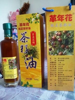 贵州毕节野生山茶油 革年花