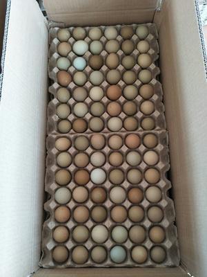 这是一张关于野鸡蛋 食用 箱装的产品图片