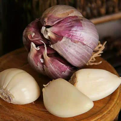 甘肃张掖民乐紫皮大蒜 5.5-6.0cm 多瓣蒜 紫皮大蒜大蒜5.5-6.0多瓣蒜