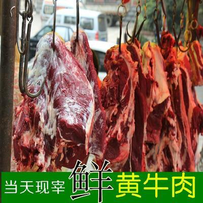 甘肃白银牛肉 1个月