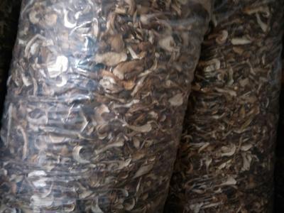 四川达州干菌子 散装 半年