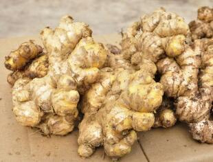 这是一张关于老姜 3两以上 带土的产品图片