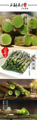 云南文山霍山石斛