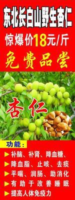 广东广州荔湾区杏仁 6-12个月 袋装