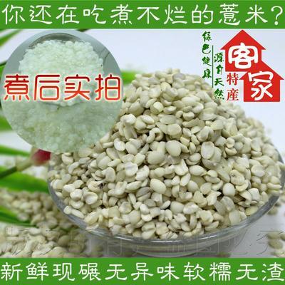 福建三明宁化糯薏米