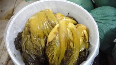 广东梅州酸菜