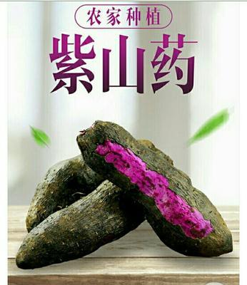 江西赣州紫板薯 0.5-1斤