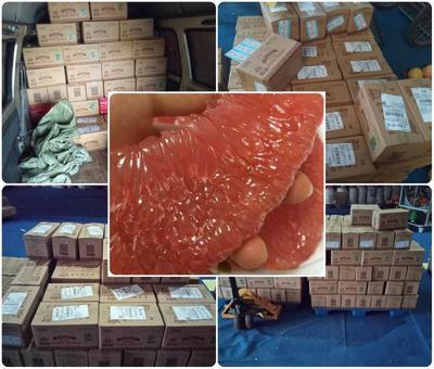 福建漳州平和蜜柚 2.5斤以上 柚子  平和蜜柚   官溪琯溪蜜柚