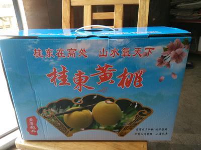 湖南郴州桂东高山黄桃 60mm以上 4两以上