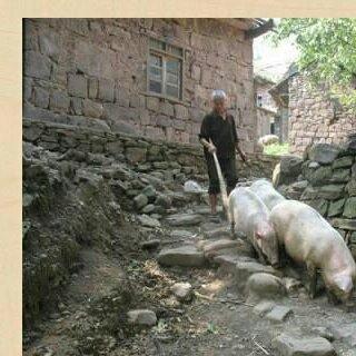 四川巴中传统手工腊肉 袋装 6-12个月