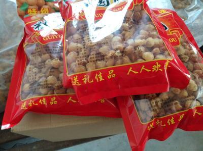 广西玉林桂圆肉