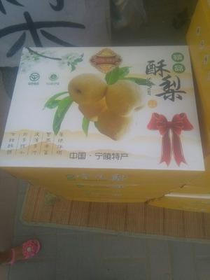 这是一张关于酥梨 75 - 80mm 200-250g的产品图片