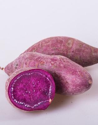 河南开封紫薯 3两以上 通货