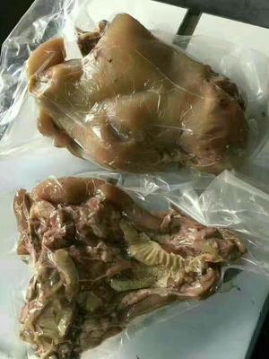 山东滨州牛肉 6-12个月