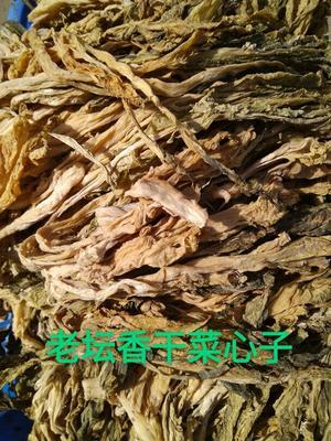 湖南岳阳干盐菜 6-12个月